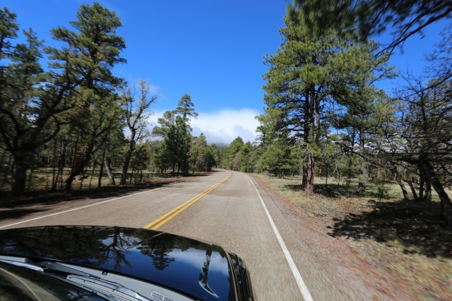 The Great American Roadtrip: Los Angeles to Flagstaff.