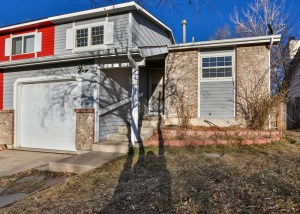 Colorado Springs Real Estate 1