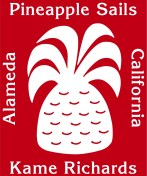 pineapple-logo