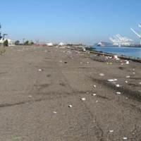 The City of Alameda is seeking volunteers to help clean up Alameda Point. (City of Alameda)