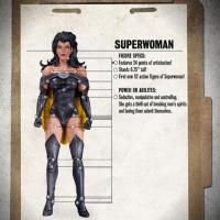 DCCcrime_syndicate_5_superwoman