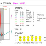 cricket-battinggraph-full