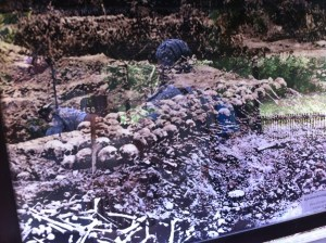 A photo documenting the excavation of the killing fields.
