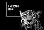 estrategia_trafico_fauna_silvestre_serfor_actualidad_ambiental_06