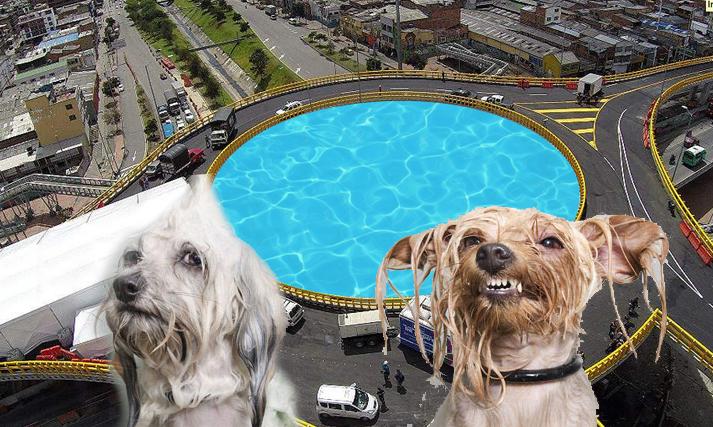 La piscina para perros llevará el nombre de Bacatá Petro. Foto: render IDU