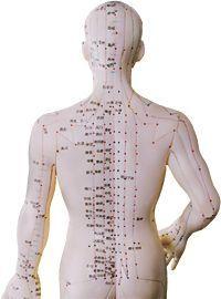 Portland Acupuncture