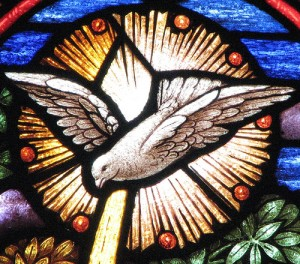 Stained Glass Dove