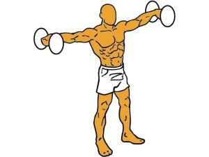 Elevación Lateral, ejercicio de hombros