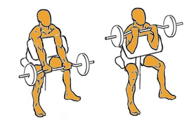 Biceps en plano inclinado