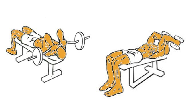 Triceps en banco, con barra o mancuernas