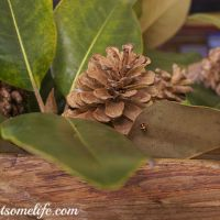 Bleaching Pinecones and Boxwood Wreath