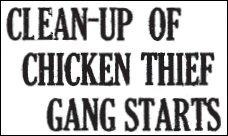 Chicken Thief headline 1926