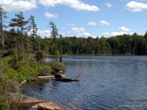 Sitz Pond