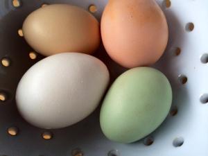 The Green Egg
