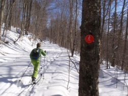 A skier starts out on the Upper Hudson Ski Trail. Photo by Phil Brown.