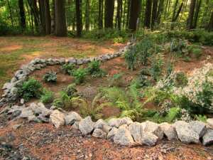 This rain garden is a landscaped depression that captures and absorbs stormwater from the Hamilton County Soil and Water Conservation District's driveway and roof.