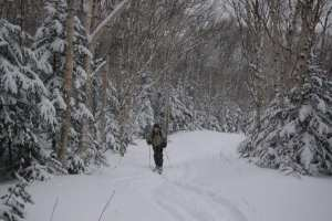 Wright Peak Ski Trail