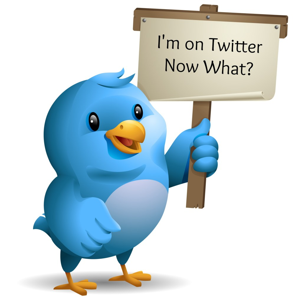 I'm on Twitter. Now What?