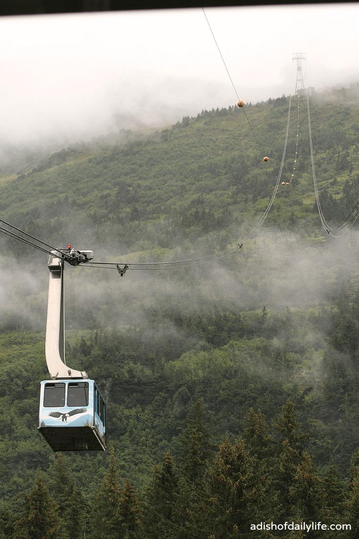 Scenic Aerial Tram to Seven Glaciers Restaurant