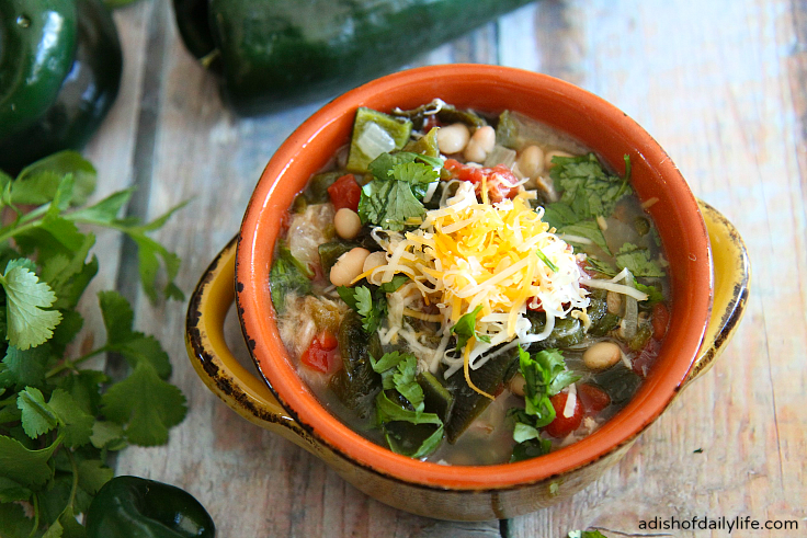 Hearty Slow Cooker Spicy Pork Green Chile Stew...perfect for party crowds and weeknight dinners!
