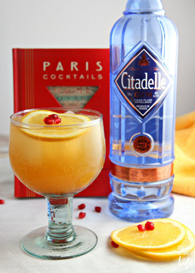 Celebrate the season with this Orange Pomegranate Gin Cocktail...winter fruits combine with Citadelle gin for the perfect holiday cocktail! Content for 21+