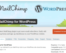 mailchimp-wordpress-3
