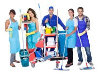 Group of professional cleaners