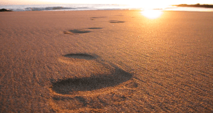 footprints-in-sand.jpeg