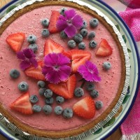 Strawberry Blood Orange Frozen Pie