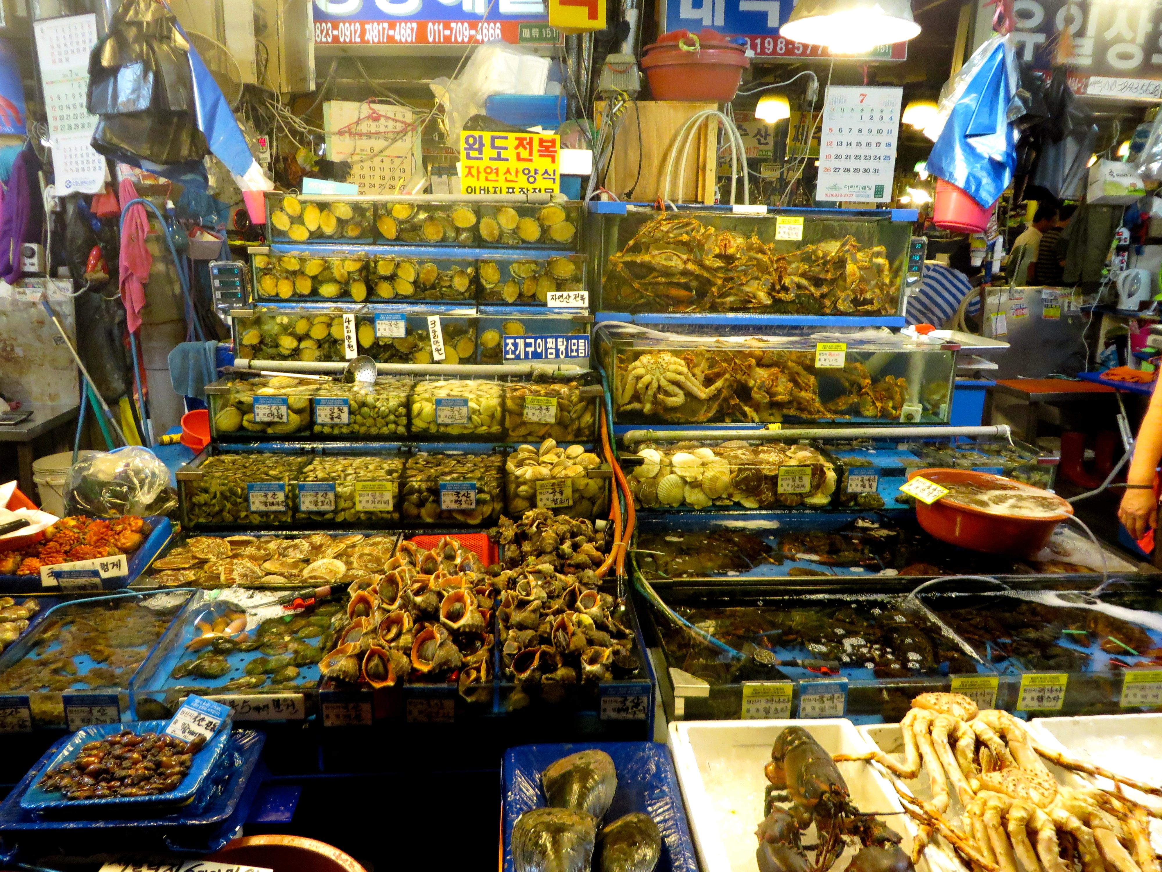 Eating live octopus at the noryangjin fish market in seoul for Fresh fish market tampa