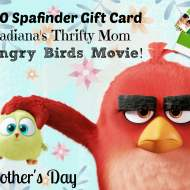 Win A $100 Spafinder Gift Card #AlohaAngryBirds