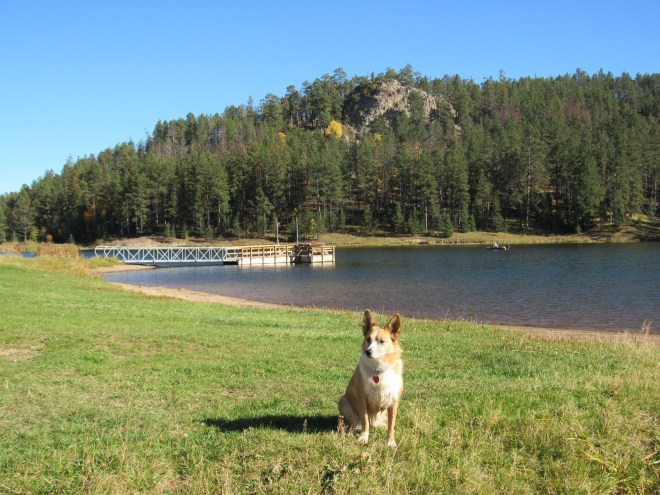 Lupe on the N shore of Iron Creek Lake. Photo looks E.