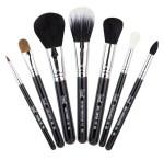 Sigma Beauty Brushes Travel Treats
