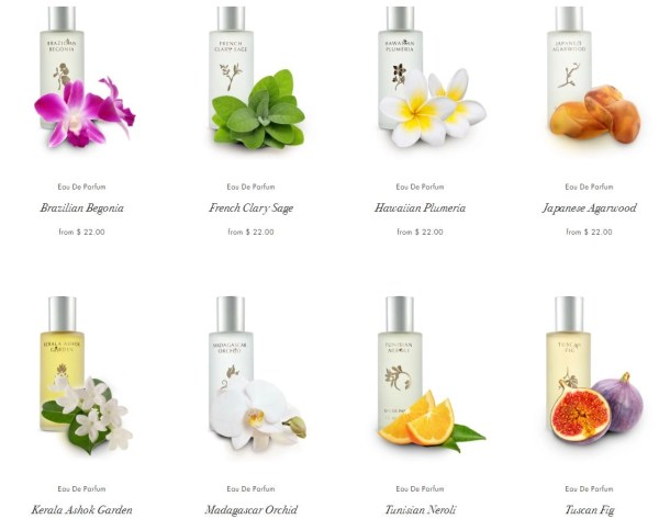lisa-hoffman-fragrances