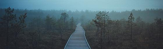 Estonia 2017 560