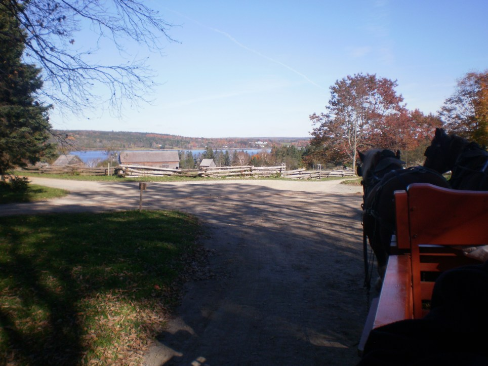 riding in a horse drawn wagon.