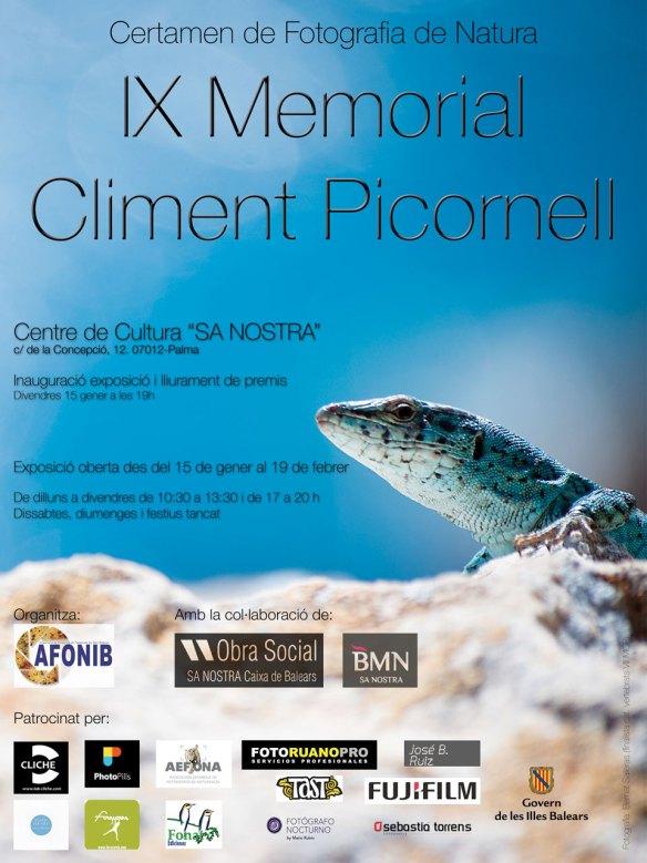 IX Memorial Climent Picornell