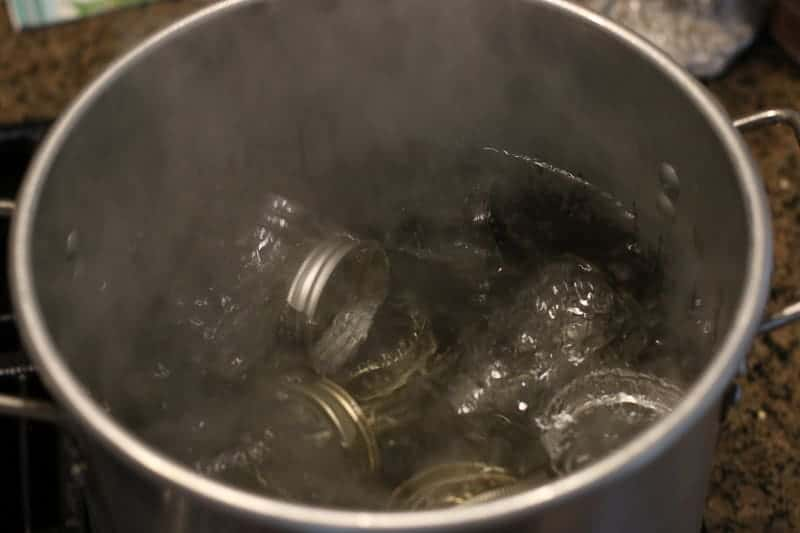 Boil your washed jars to kill any germs.
