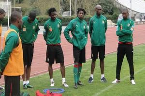 Le Cameroun en amical en novembre contre l'Albanie