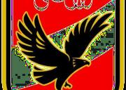al-ahly_logo