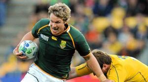 springboks-wallabies_four nations