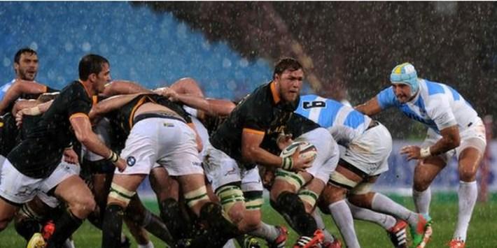 springboks vs pumas_four nations 2014
