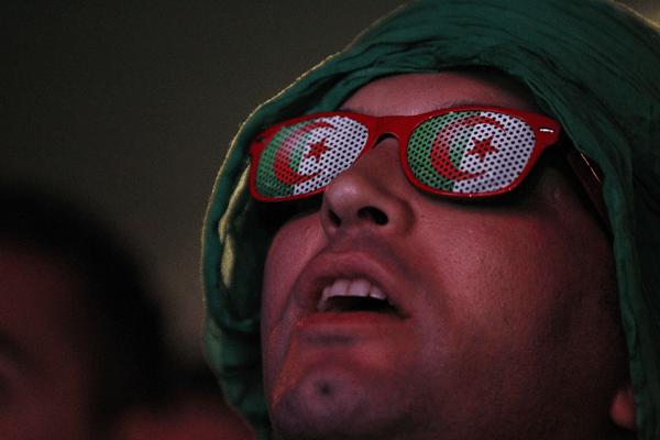 algerifans (Copier)