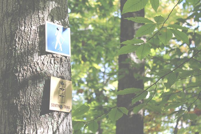 Sentinel Trail Sign