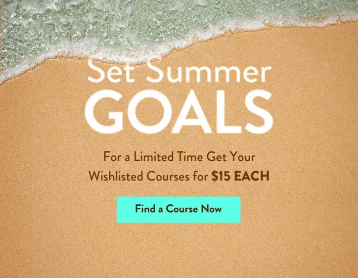 udemy set summer goals