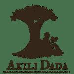 Akili Dada Fellowship for Young African Women 2017
