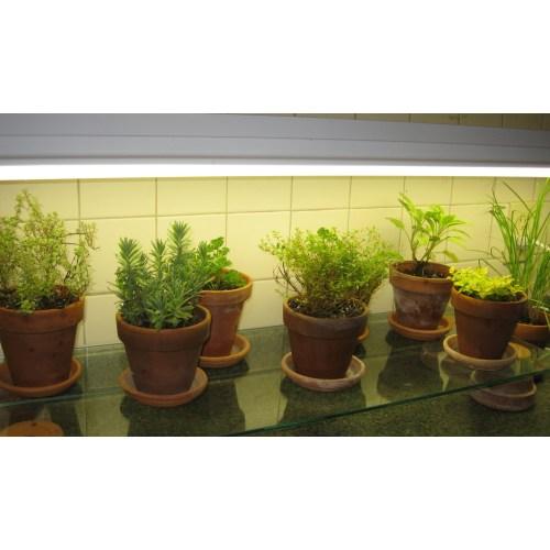 Medium Crop Of Indoor Vegetable Garden Setup