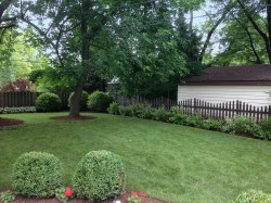 Ideal Arlington Heights Backyard Landscaping Ornamental Grasses Coral Bells Arlington Heights Backyardlandscaping Backyard Landscaping Arlington Heights Landscaping And