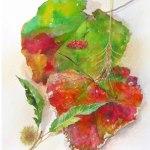 小島加奈子「nature sketchbook – 田園の秋」(水彩 44×33.5cm)⇒売却済み