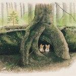 小島加奈子「倒木の懐で(34.0×46.0cm)」
